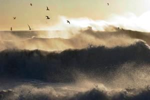 Leif Rustand og hans vakre bilder er godt kjent for oss i Livets Vann.